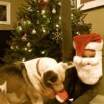 Merry Christmas, Blogosphere!