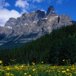 Castle Mountain: The Hike, The Hut & The Throne