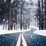 Christmas Road Trip: California to Canada!